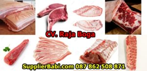 Supplier Daging Babi Di Bali